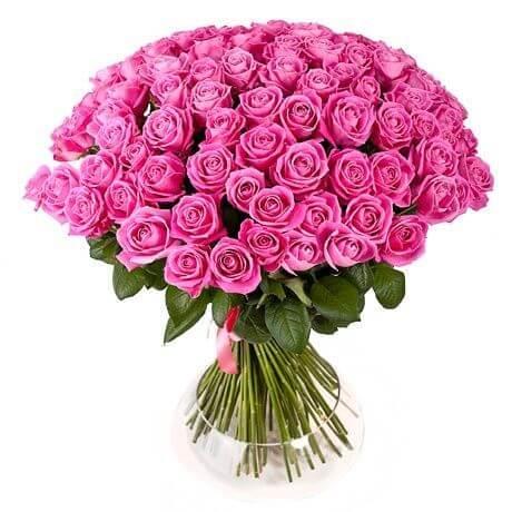 101_pink_roses_bant_1