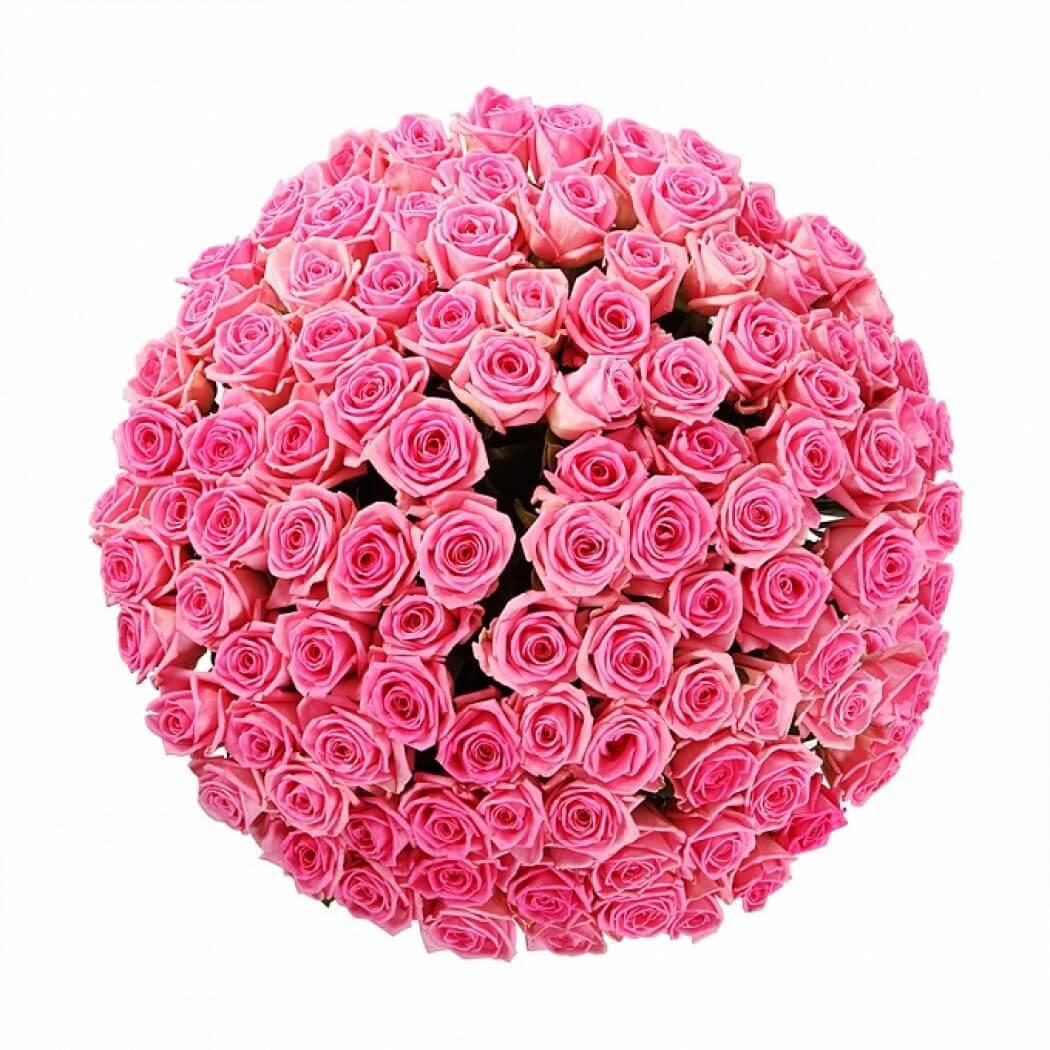 101_pink_roses_bant_2
