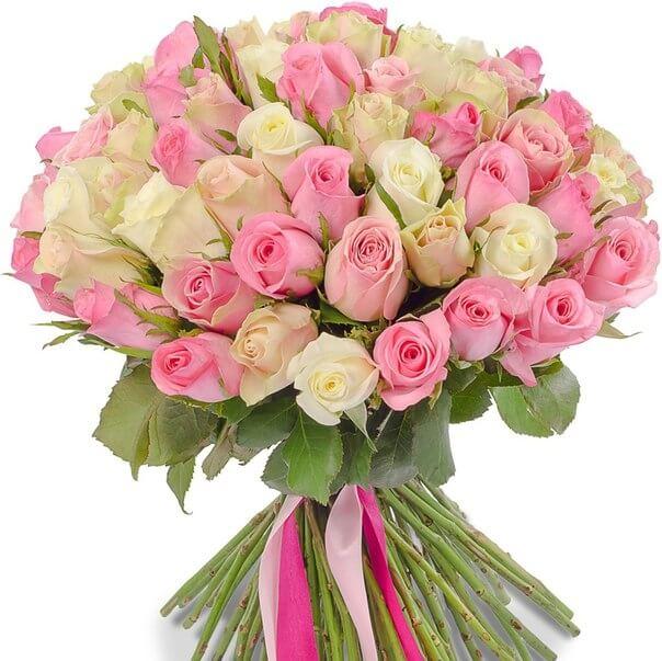 51_pink_white_rose_bant_1