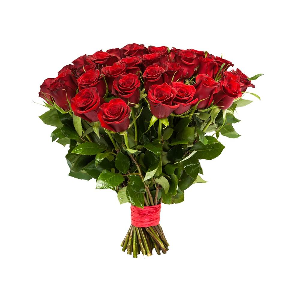эквадорская роза 40см