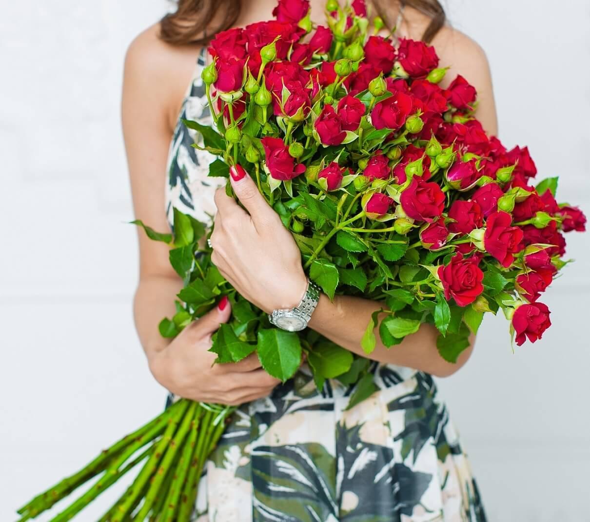 куст роза 2