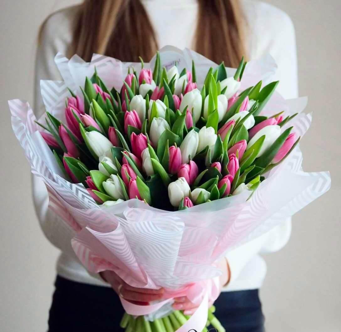 Букет тюльпанов 55 штук